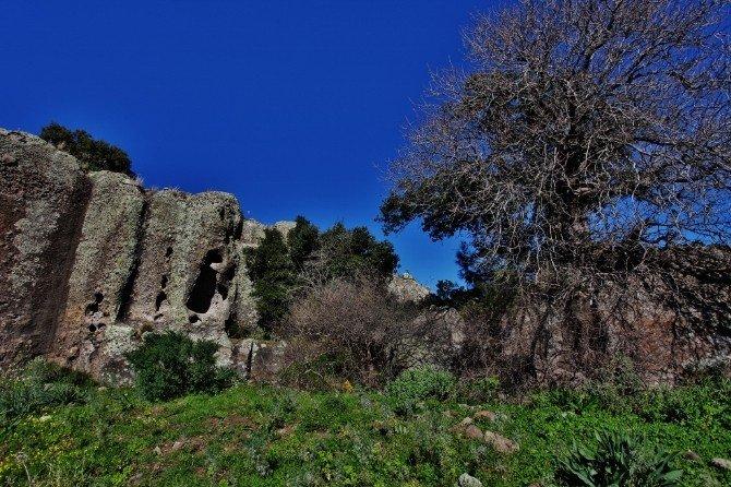 Bodrum'da Doğa Ve Tarihi Buluşturan Tepe