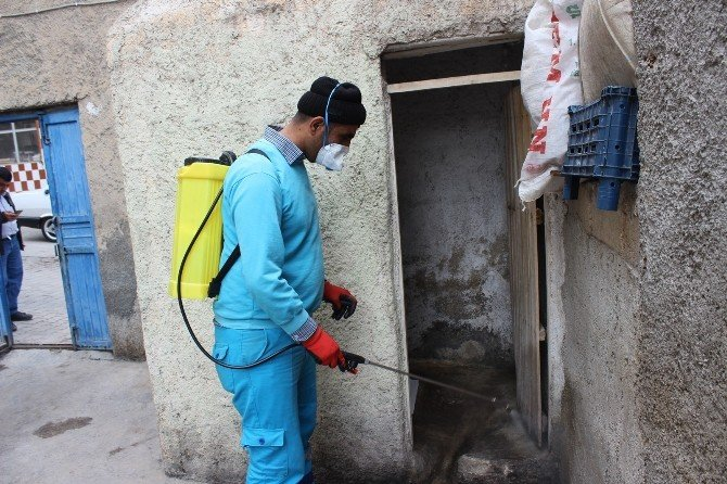Eyyübiye Belediyesi Haşere İlaçlamasına Erken Başladı