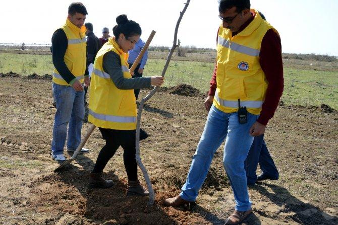 Akdeniz Belediyesi'nden Kulak Mahallesi'ne yeni mesire alanı