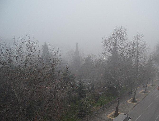 Trabzon'da Yoğun Sis