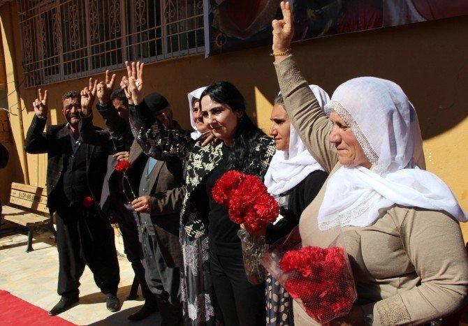 HDP, 8 Mart Startını Silopi'de Verdi