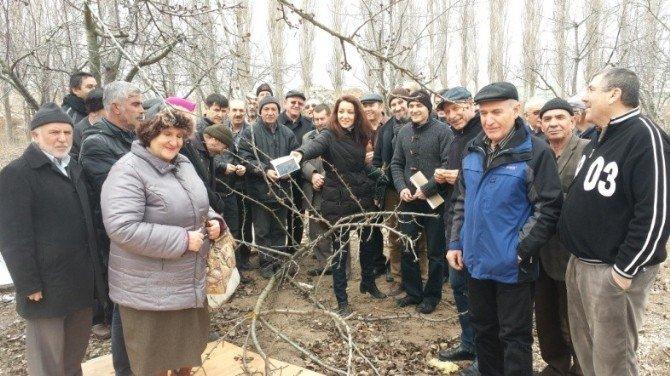 Eskişehir'de Meyve Ağaçlarını Budama Kursu Açıldı
