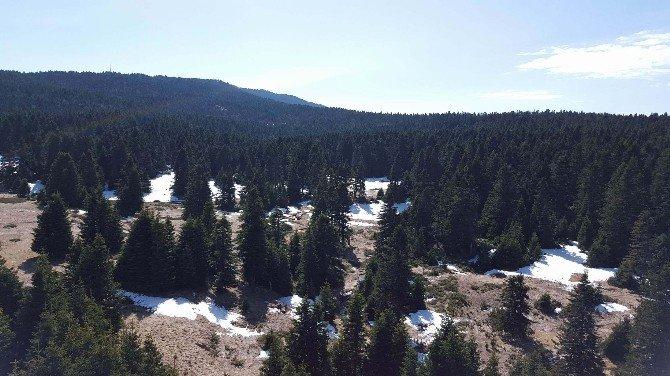 Son Yılların En Sıcak Mevsimi Uludağ'da Karları Eritti