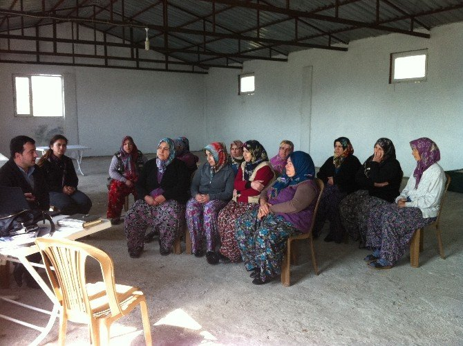 Çiftçilerin Yeni Geçim Kapısı Lavanta Olacak