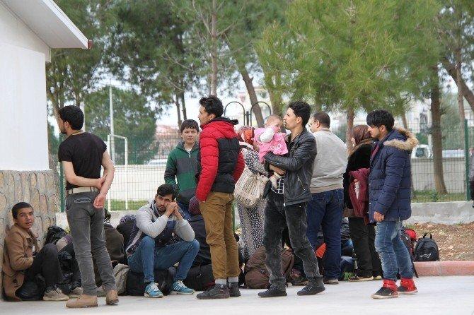 Didim'de Suriye Uyruklu 34 Göçmen Yakalandı