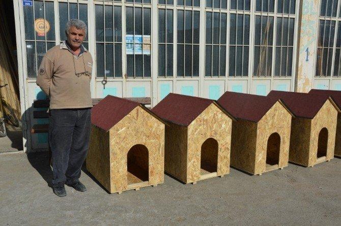 Hayvanseverlerden Sokak Köpekleri İçin 10 Adet Kulübe