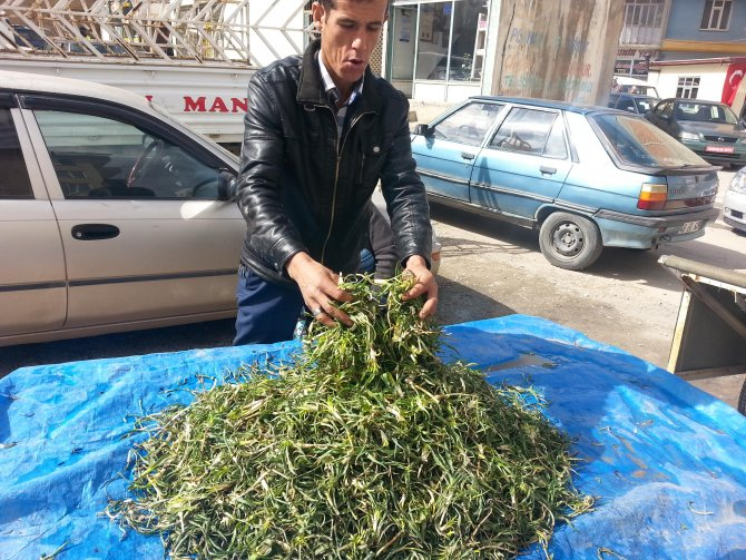 Afşin'de yemlik pazara çıktı
