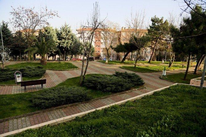 Maltepelilerin İsteği Üzerine 3 Parkın İsmi Değişecek