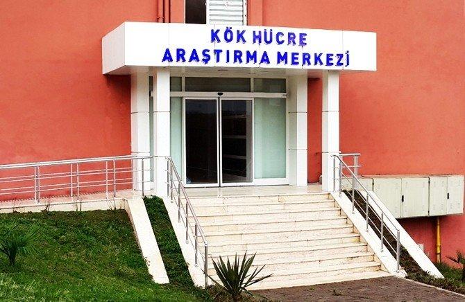 """OMÜ'de """"Kök Hücre Araştırma Merkezi"""" Açılıyor"""