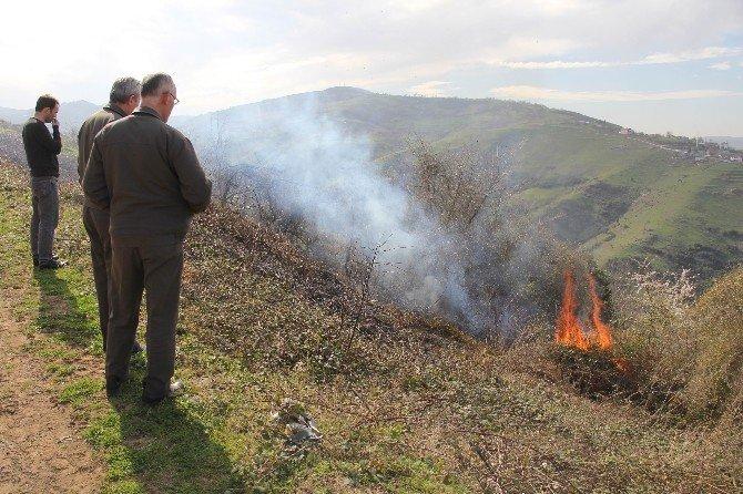 Yangın, Ormanlık Alana Sıçramadan Söndürüldü