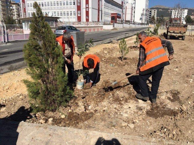 Parklarda Ağaçlandırma Çalışması Yapılıyor