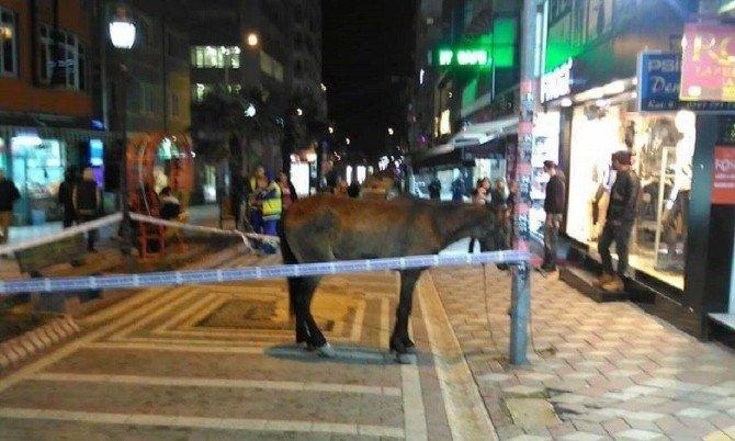 Atın Etrafına Güvenlik Şeridi Çektiler