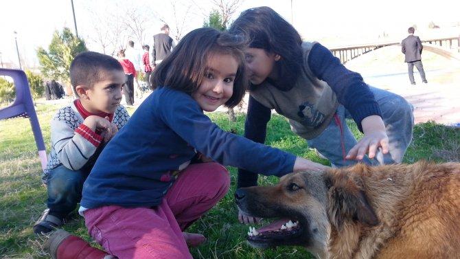 Cizreli çocuklar uzun aradan sonra parklarda oynadı