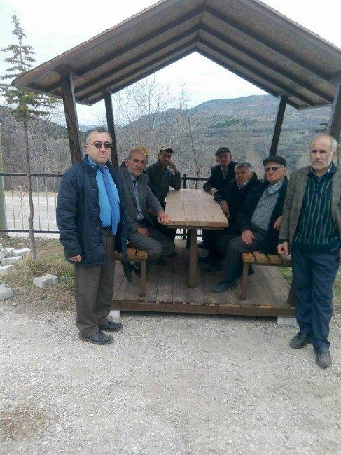 Odunpazarı Belediyesi'nden Gürleyik'e Kamelya