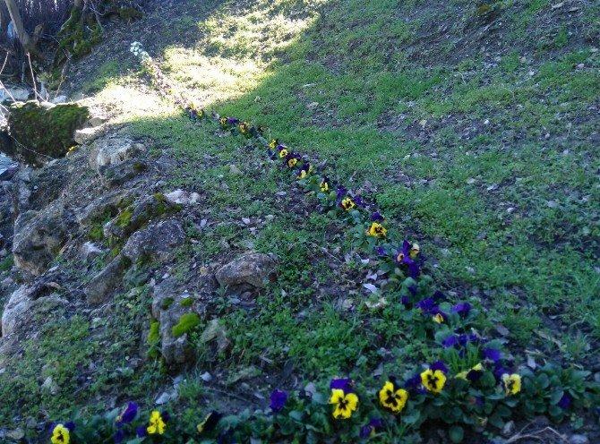 Gördes'in Mezarlıklarında Hassas Çalışma