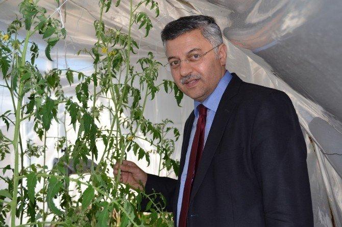 Van'da 'Yeni Bir Toprak Projesi'