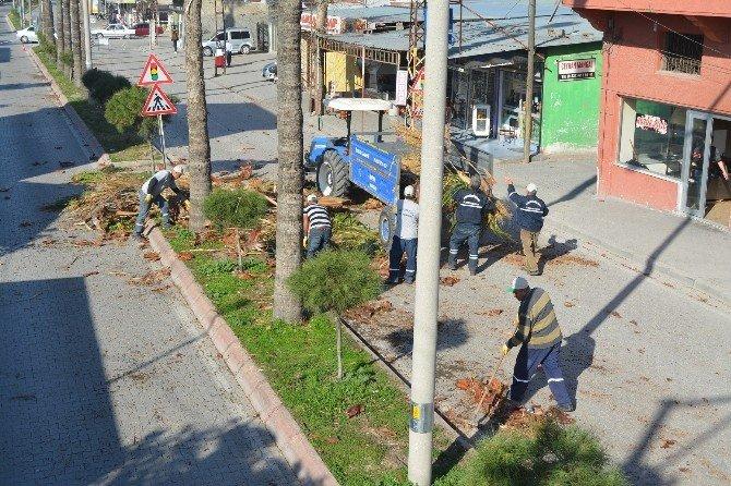 Büyükşehir'den, Ceyhan'da Ağaç Budama Ve Peyzaj Çalışması