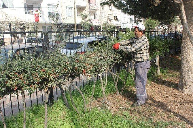 Turgutlu'nun Dört Bir Yanı Bahara Hazırlanıyor