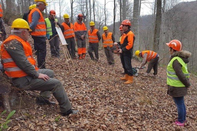 Ormanda Üretim Ve İş Güvenliği Tatbikatı Yapıldı