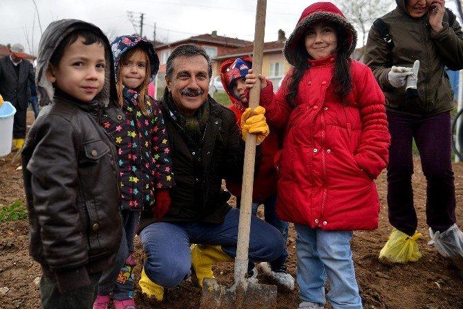 Eskişehir'de Yerli Tohumu Destekleme Çalışmaları