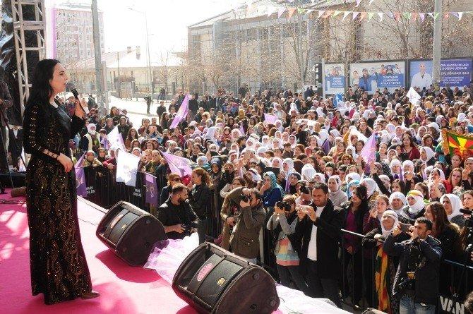 Van'da 8 Mart Dünya Kadınlar Günü Mitingi