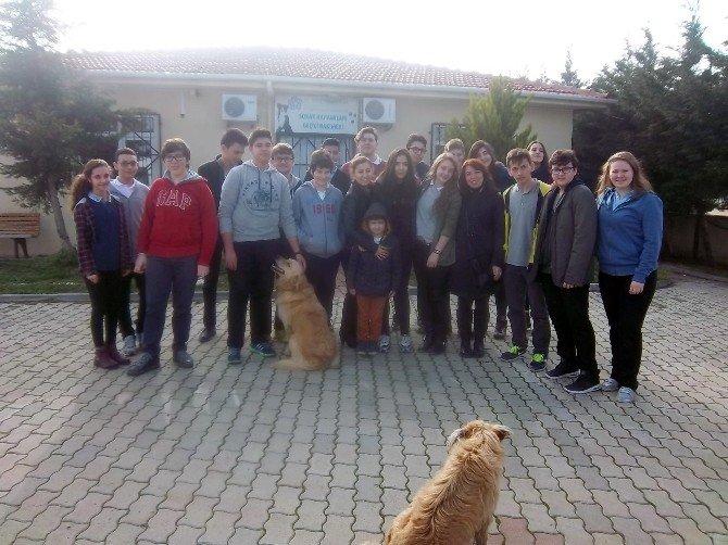 Sokak Hayvanları Geçici Bakımevi'ne Öğrencilerden Ziyaret