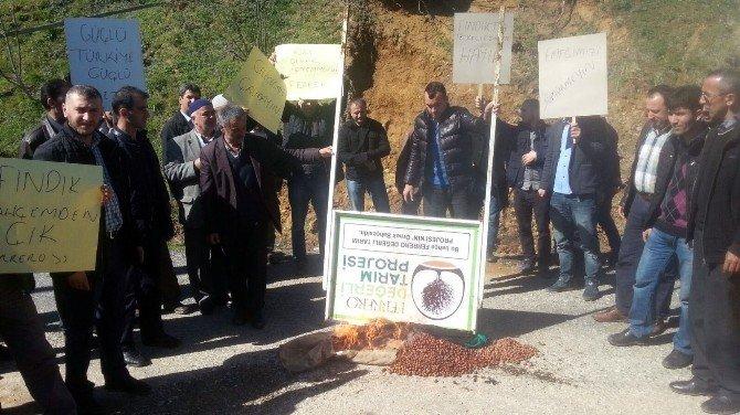 Köylülerden Fındık Fiyatları Protestosu