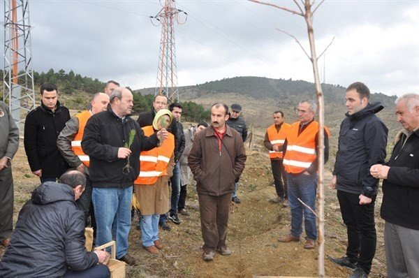 Kastamonu'da Ağaçlandırma Eğitim Ve Tatbikatı Yapıldı