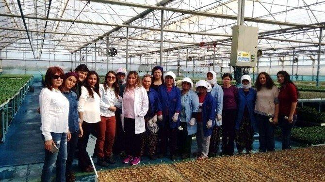 Akdeniz Belediyesi'nin Kadın Çalışanları Bu 8 Mart'ta Da İzin Yaptı