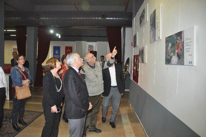 Kırsalda Kadın Fotoğrafları Bursa Göç Tarihi Müzesi'nde