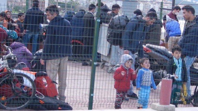 Dikili'de 52 Sığınmacı Yakalandı
