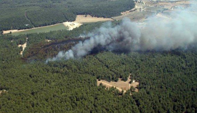 Sarnıç yangınının yaraları sarıldı, bölge yeniden yeşile büründü