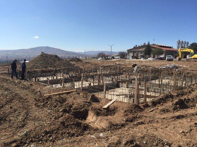 Türkiye'nin İlk Doku Kültürü Laboratuvarı Ve Serası Yapılıyor