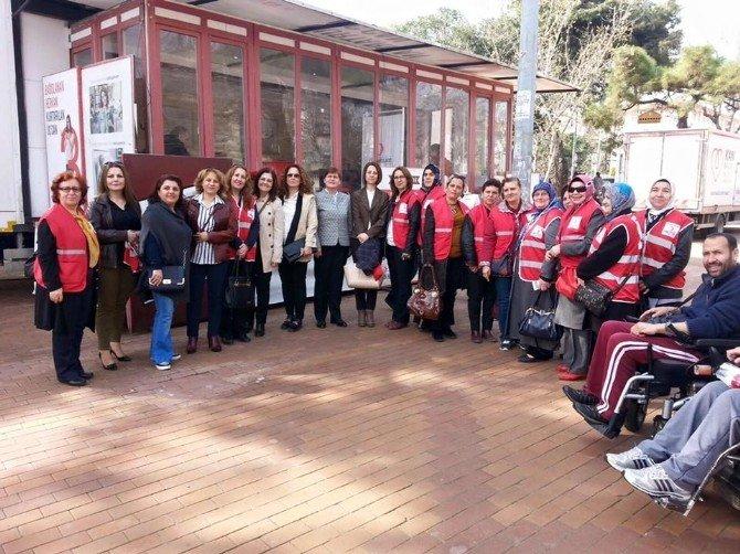 AK Parti Tekirdağ Teşkilatı'nın Kadınlar Günü Etkinlikleri