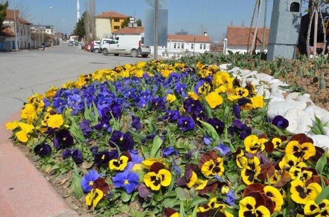 Ekipler, Mevsimlik Çiçek Dikimine Hız Verdi