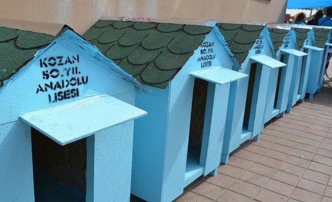 Lise Öğrencilerinden Köpek Kulübesi