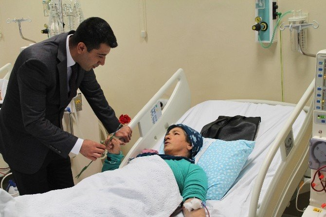 Böbrek Hastalarına Karanfil Dağıttı