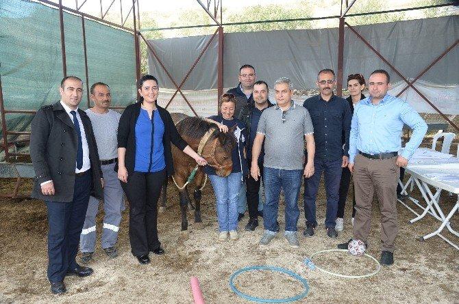 Yılkı Atları İle Engelli Çocuklara Terapi İçin Personel Eğitiliyor
