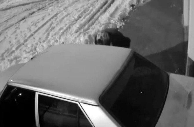 'Etekli Hırsızı' Araba Jantı Ele Verdi