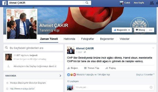 Belediye Önüne İncir Ağacı Diken CHP'lilere Esprili Gönderme