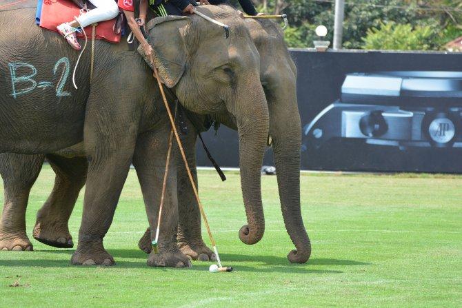 2016 Fil Polo Turnuvası Tayland'da başladı
