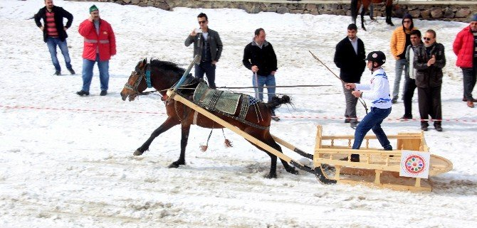 Palandöken'de Atlık Kızak Yarışı