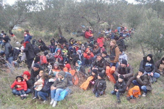Çanakkale'de Göçmen Kaçakçısı 18 Organizatör Yakalandı