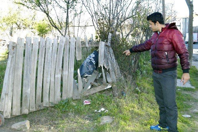 Park Halindeyken Hareket Eden Kamyonet Tehlike Saçtı