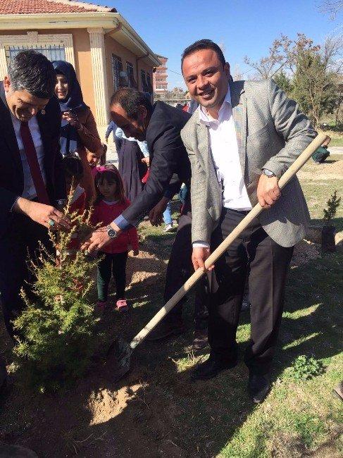 Aksaray'da 25 Bin Fidan Toprakla Buluşturuldu