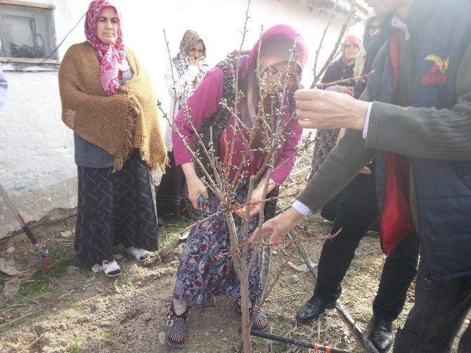 Kadın Çiftçiler Bahara Hazır