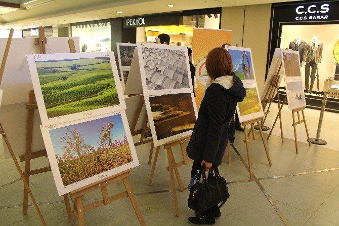 Tarım Ve İnsan İsimli Fotoğraf Sergisi İlgi Görüyor