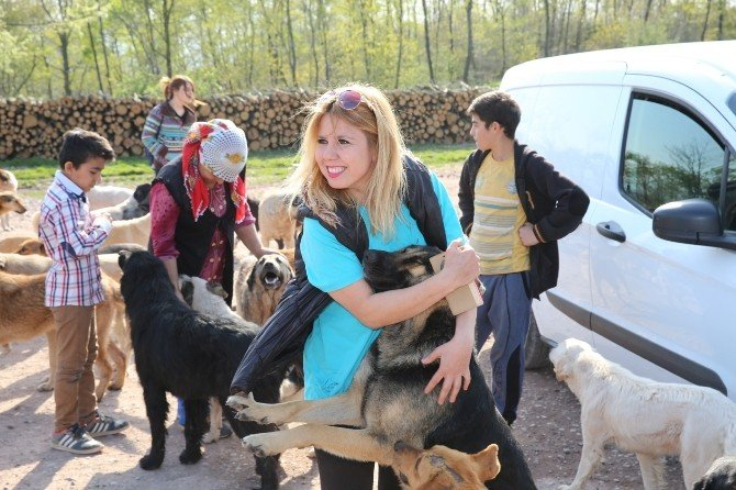 Hayvanseverler Sokak Hayvanlarını Besledi