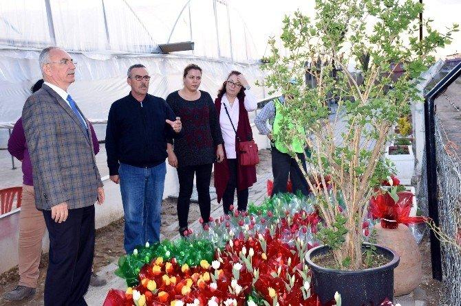 İncirliova Çiçeklerini Kendisi Üretiyor