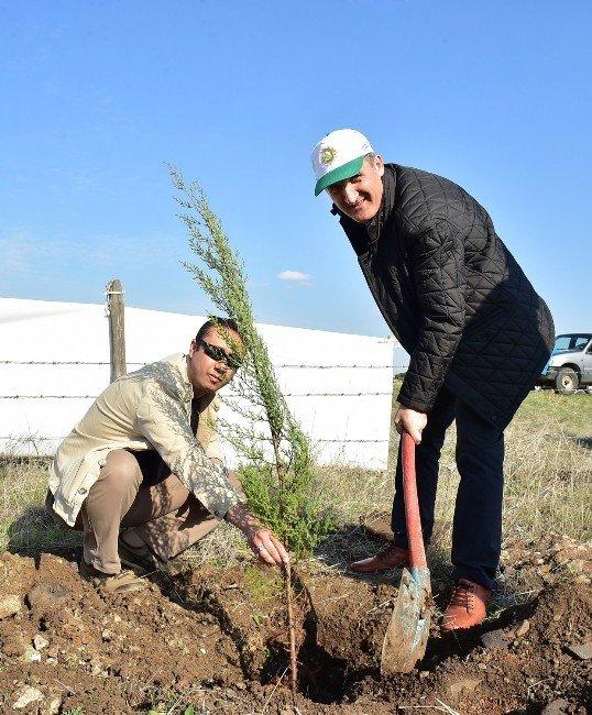 Başkan Okay'dan Yeşil Adım